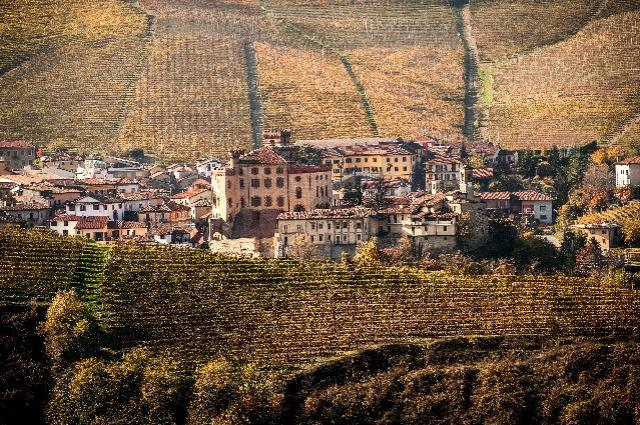 master-vino-Barolo-Photo credit - Marcello Marengo (1)