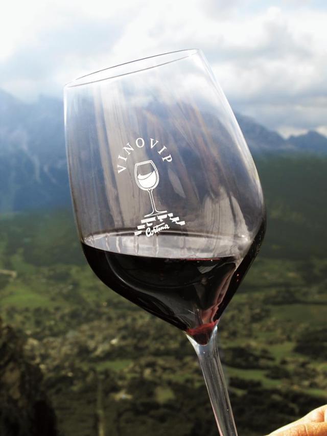Bicchiere di VinoVip low