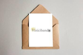 vinicibando 3